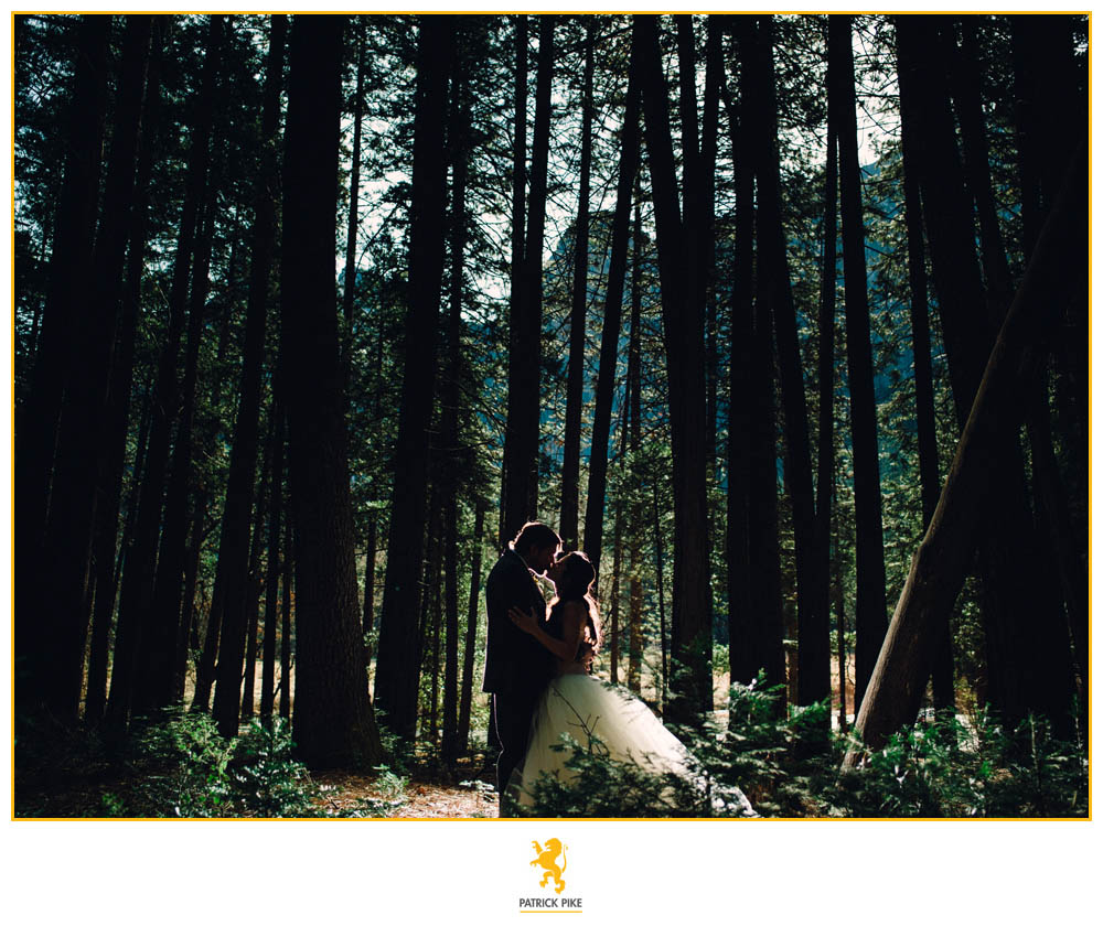 Yosemite Elopement in trees