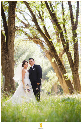 Erica and Jose Meadow elopement